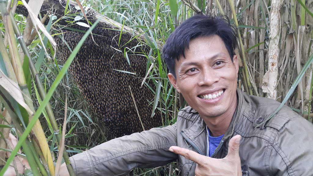 xây dựng thương hiệu mật ong rừng u minh